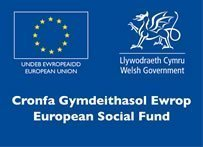 Euro social fund Wales